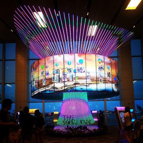 สวยดีนะ ShangiAirport SGTrips