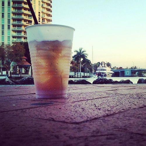 Fort Liquordale perspective Fortlauderdale Jackandcoke Intercoastal Beachlife Beachbum Fatcats