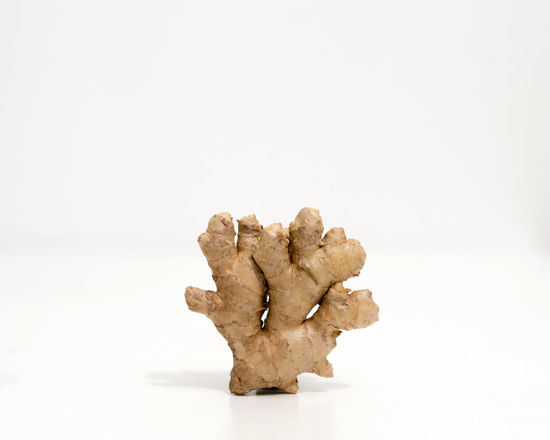 Ginger Asian  Asian Spices CutOut Ginger Beer Ginger Tea Green Food Herb Indian Slow Food Close-up Copy Space Food Still Life Ginger Ginger Root Healthy Herbal Medicine Ingredient No People Rhizome Seasoning Spice Sprout Studio Shot White Background