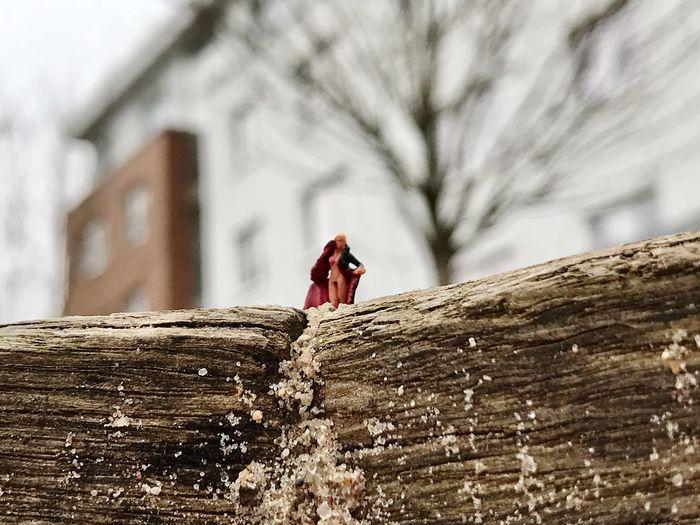 People on log against trees