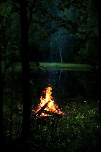 """""""Burn the memories"""""""