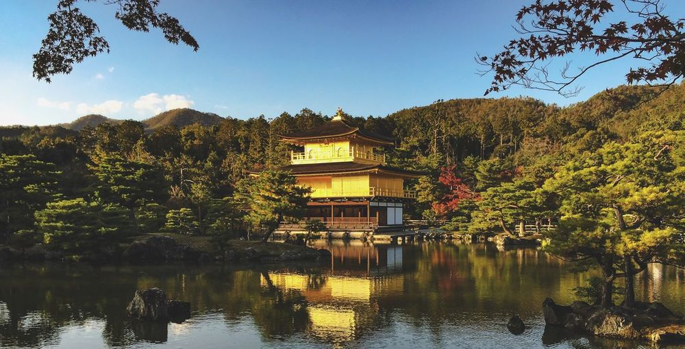 Kinkakuji Water Tree Plant Reflection Architecture Sky Autumn Mood Beauty In Nature Building