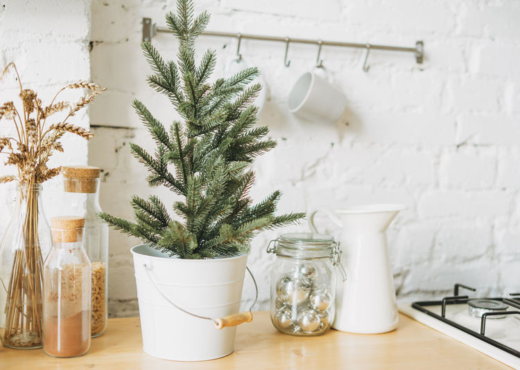 Christmas tree in white pot on bright kitchen, cozy home