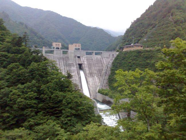 Dam Forest Ravine Nature