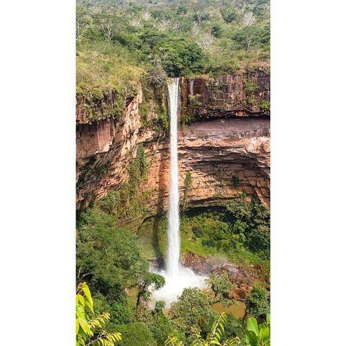 Cachoeira Véu de Noiva em Chapada dos Guimarães-MT ✅Use: MatoGrosso_Brasil 📷Foto: Amaury Santos ____________________________ ✅Visite nossas parceiras: 🌟@brasilbr55 🌟 🌟@nordestemeulindo 🌟 _____________________________ Veudenoiva Chapadadosguimaraes Matogrosso CentroOeste Brasilien Bresil  Brasil Brazil Brasilbr55 Southamerica World IloveBrazil VisitBrazil VejaMatoGrosso MtcomVc BrasilSensacional MatoGrossoéLindo Paisagens Paraíso Magnifique