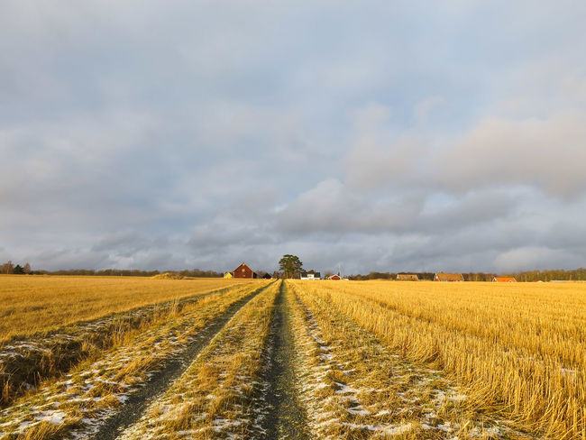 Landscape Fields Path Stigby Persgård Sky And Clouds Outdoors Walking