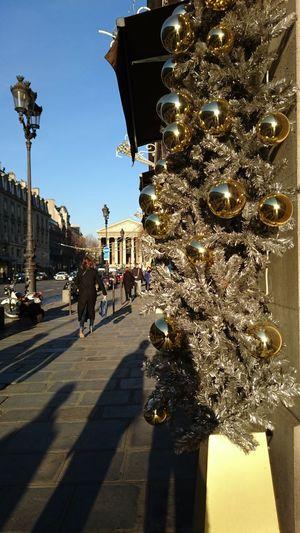 Celebration Christmas Day Decoration