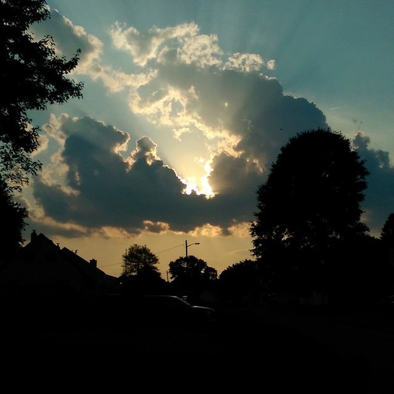 tree, silhouette, sky, no people, nature, outdoors, cloud - sky, sunset, beauty in nature, day
