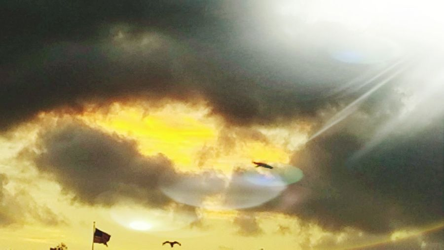 Sunshine Bright Pretty Glare Fire Light Clouds BIRDS