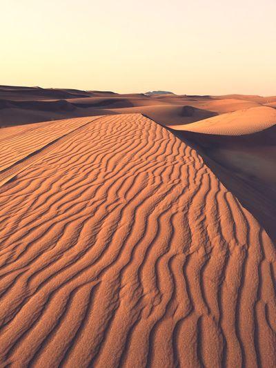 in a desert Desert Dubai EyeEm Selects Scenics - Nature Land Sky Beauty In Nature Sand Tranquility