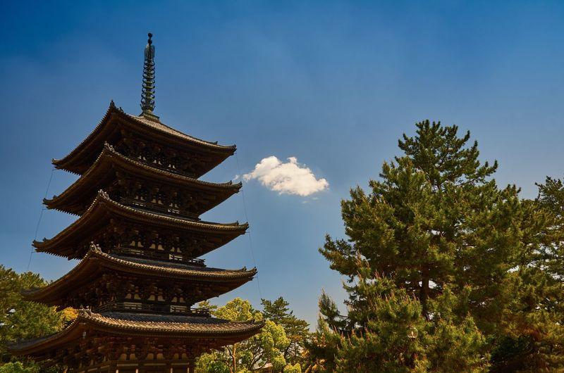 Low angle view of kofuku-ji pagoda by trees against sky