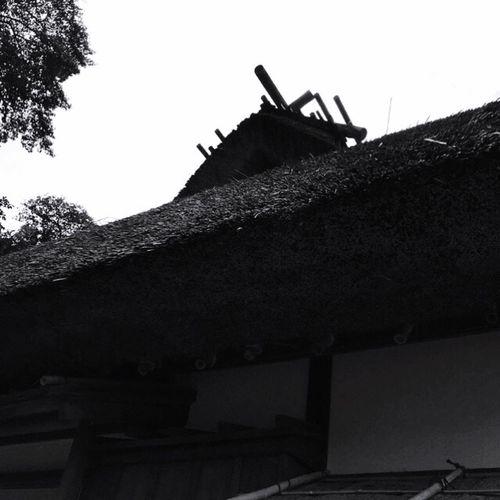 茅葺き屋根 日本 古民家 Japan