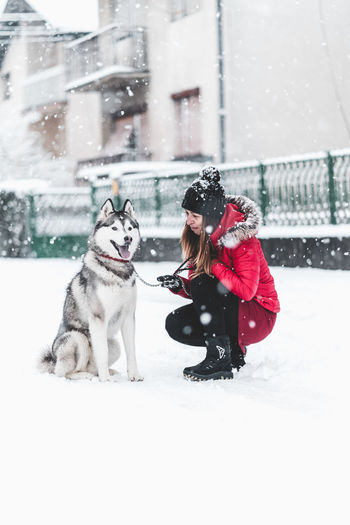 Husky Snow Winter Cold Temperature Real People Warm Clothing Clothing Snowing One Animal Women Pets Domestic Animals Day Domestic Mammal People Females Nature Outdoors Extreme Weather