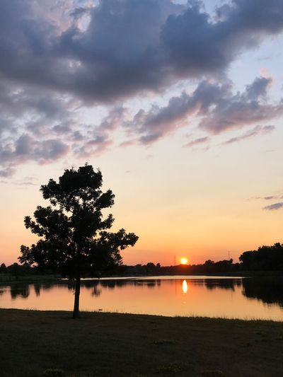 Sunset over the lake Sky Sunset Water Plant Tree Beauty In Nature Tranquility Scenics - Nature Silhouette Cloud - Sky Tranquil Scene Nature Lake Outdoors Orange Color Reflection No People Idyllic Land