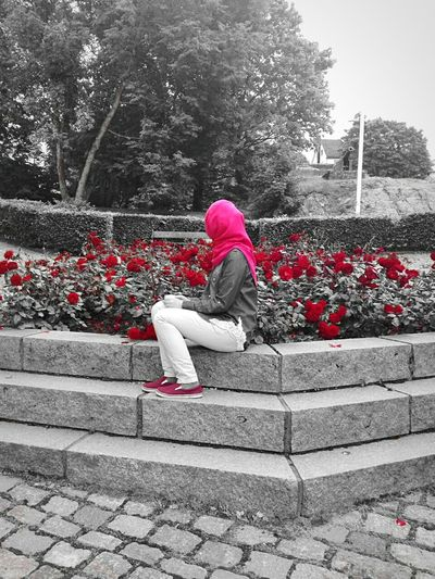 Flower Person Red Day One Woman Only Plant Rose🌹