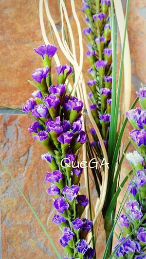 Flores Flower Collection Flowers Artificial Nature Artificial Flower Bodegon Moderno Taking Photos EyeEm Nature Lover