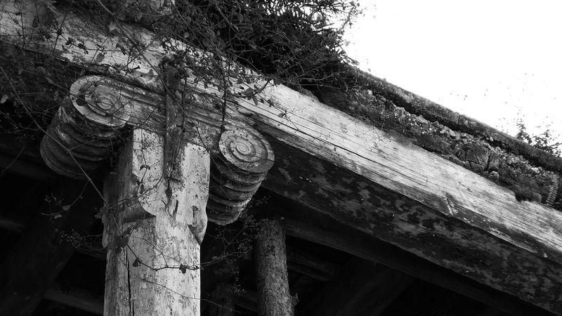Arquitectura Capitel Colonial Architecture Columna  Historical Building Madera Antigua Monumento Patrimonio Cultural First Eyeem Photo