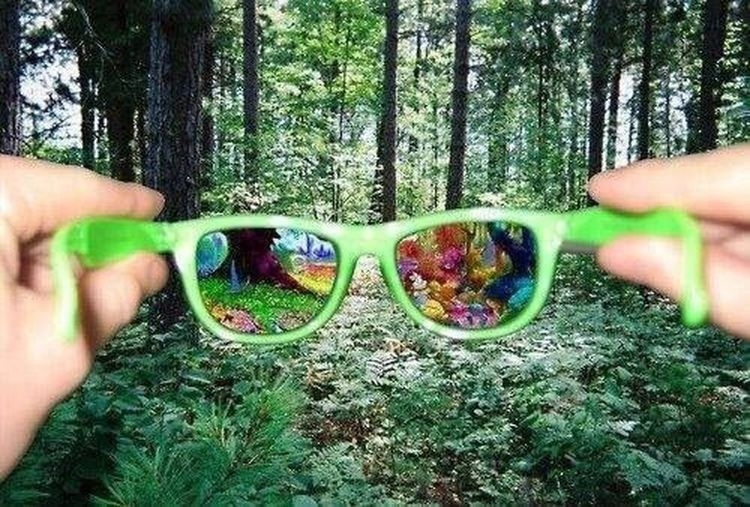 Wood Nature Free Hello World Enjoying Life Relaxing Look I Love My Sunglasses.