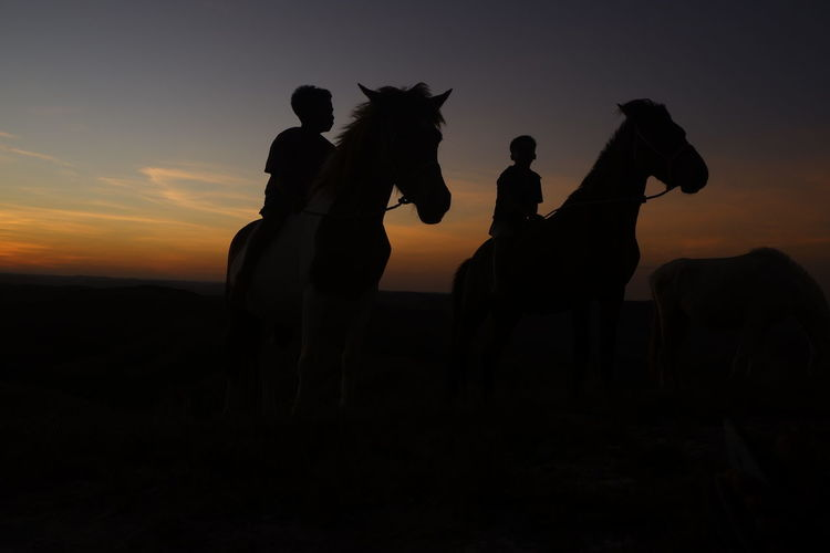 Silhouette people riding on field  sky during sunset