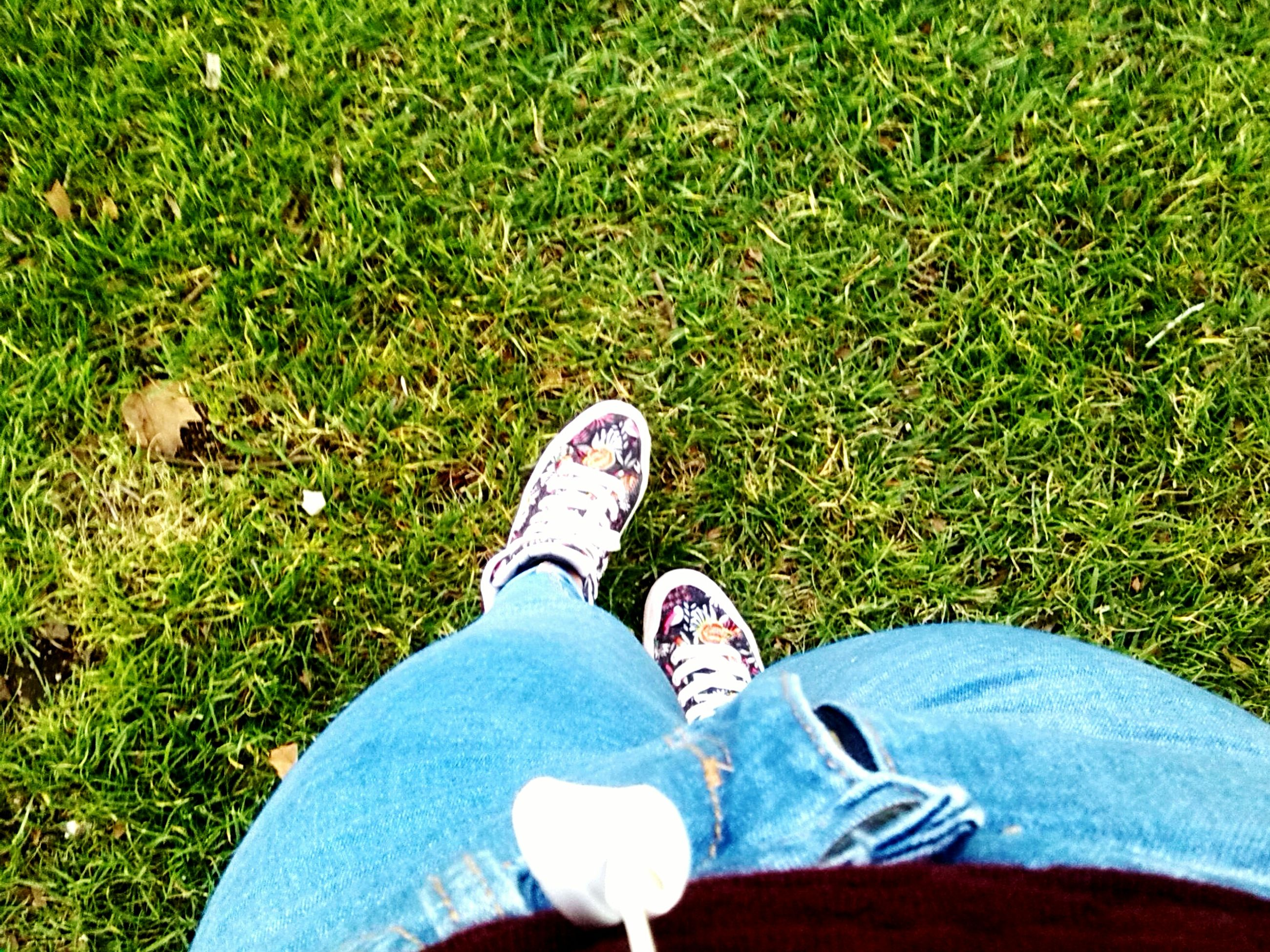 grass, low section, person, shoe, personal perspective, field, grassy, high angle view, lifestyles, footwear, leisure activity, human foot, unrecognizable person, green color, standing, men, part of