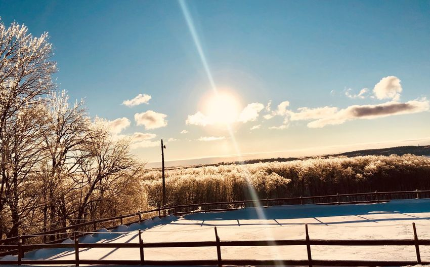 Ice Ice Crystal Sky Sunlight Cloud - Sky Nature Cold Temperature Beauty In Nature Snow Winter Water Tree Sun Tranquility Outdoors No People Day Tranquil Scene Sunbeam Plant Scenics - Nature Lens Flare