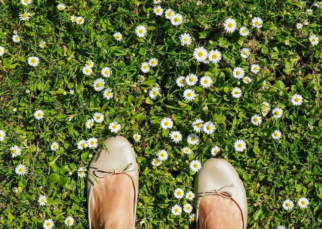 Spring feet Flowerbed Feet Ballet Flats Low Section Human Leg Human Body Part Body Part One Person Shoe Plant Personal Perspective Lifestyles Standing Green Color Day Nature Human Limb Grass Outdoors