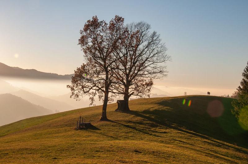 Landschaft Landscape Sunset Sky Himmel Oberdambach Ennstal Oberösterreich Upperaustria Austria Traunsee Berge Foggy Nebel