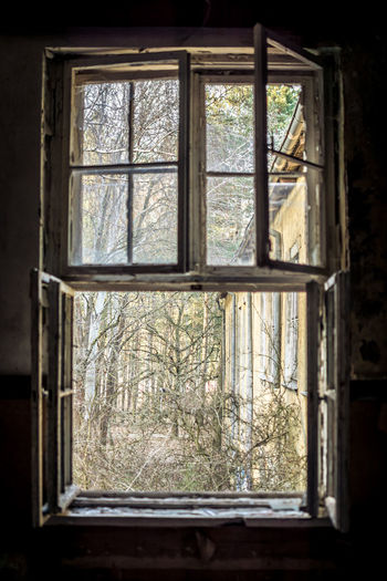 Day No People Abandoned Window Glass - Material Indoors  Tree Transparent Plant Nature Architecture Building House Obsolete Window Frame Sunlight Damaged Old Run-down Glass Decay Lostplaces Forgotten