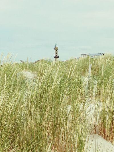 Leuchtturm Warnemünde Ostsee Düne