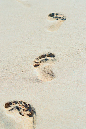 High Angle View Of Footprints In Sand At Beach