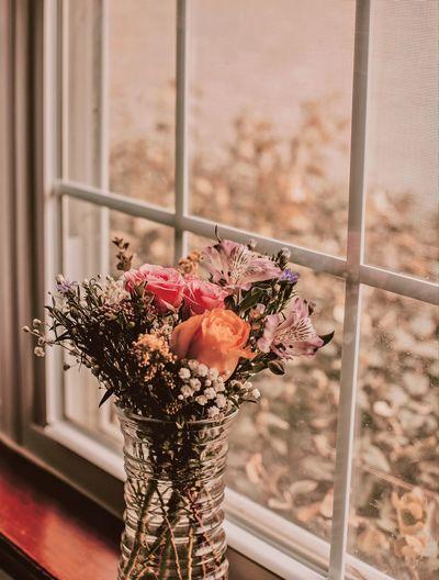 Close-up of flower vase against window