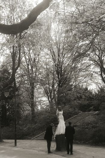 Walking Around Blackandwhite Rising Up Bride And Groom Taking Photos Trees NEM Black&white What Did You Do Last Saterday... Playing With Apps
