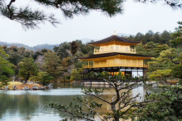 Kinkaku-ji Gold
