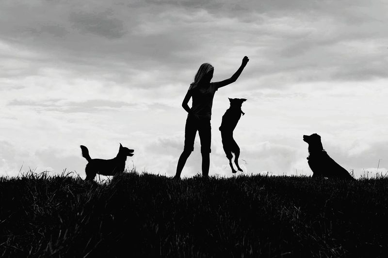 Outdoors Animal Sky Nature Dogs Dogstagram Love Cloud - Sky Blackandwhite Black&white Person Woman Young Normal Life Village Loveyourdog Loveyourlife