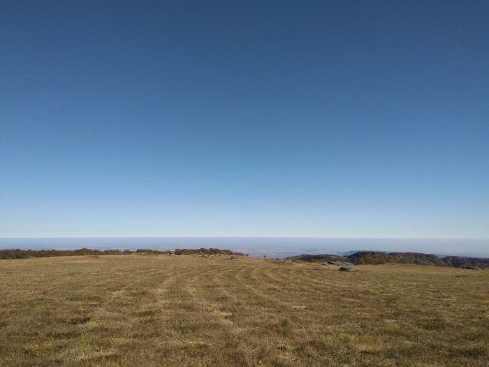 Clear Sky Agriculture Blue Field Rural Scene Sky Farmland