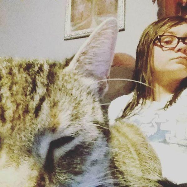 Catselfie Assholecat