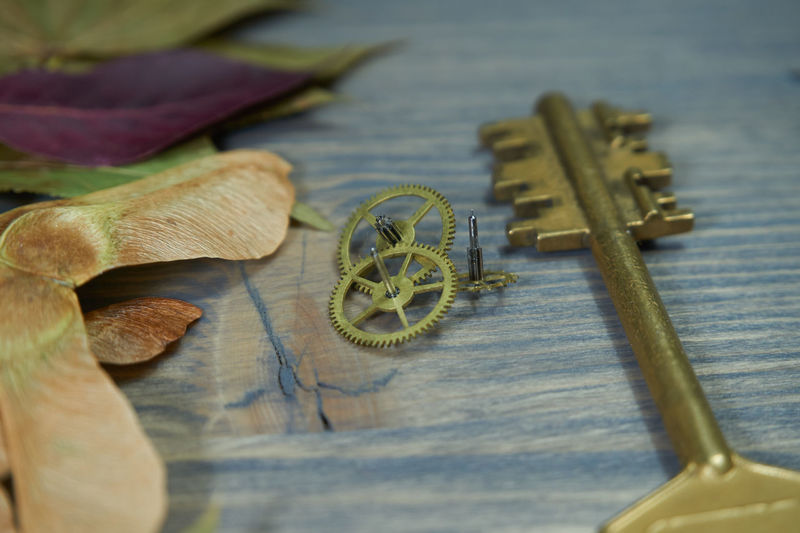 High angle view of keys with gears and dried leaves on wooden table