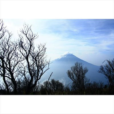 """Mt. Sumbing from Mt. Sindoro in the morning"" Indotravellers Travel Travellingindonesia Indotravellers Wonderfulindonesia Instanusantara Temanggung Sindoro Sumbing Instanesia Travelphotograph Lokeforlike Backpackerindonesia Backpack Instatemanggung Explorejateng Hiking VSCO Vscoindonesia  Vscocam 3153mdpl Lensaindonesia Potretindonesia Noefek Nature adventure mountainrepost lingkarindonesia"