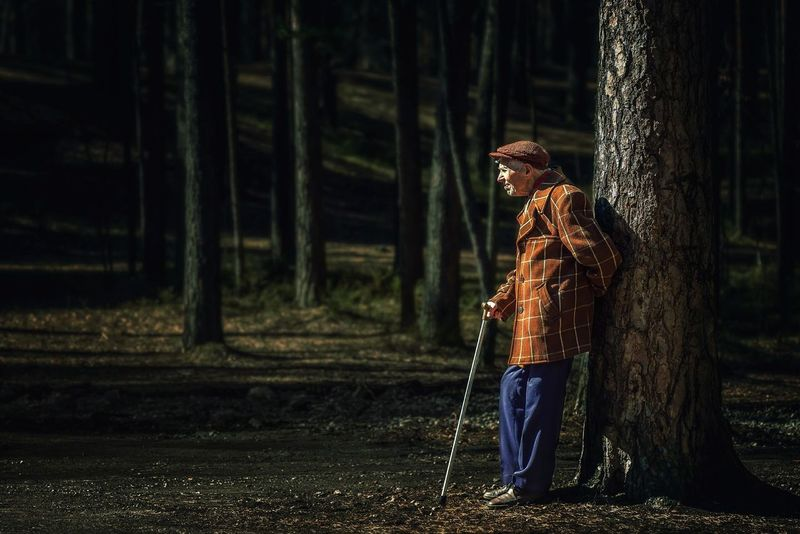 a lonely old man with a cane in a striped jacket and blue pants, standing under a tree One Person Standing Old Man The Portraitist - 2017 EyeEm Awards Sad Old Man The Photojournalist - 2017 EyeEm Awards The Portraitist - 2017 EyeEm Awards Old Men With A Cane Old Men On A Park Bench, Old Men Adults Only Adult Life Adults EyeEm Selects Old Age Old Age Man Old Age People Melancholy Melancholic Photos Melancholia Melancholic Tree Area Woods Forest Pine Woodland Long Shadow - Shadow WoodLand Pine Tree Pinaceae