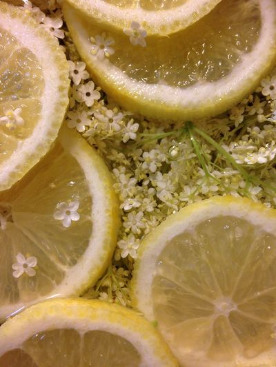 Close-up of elderflower and lemon in syrup