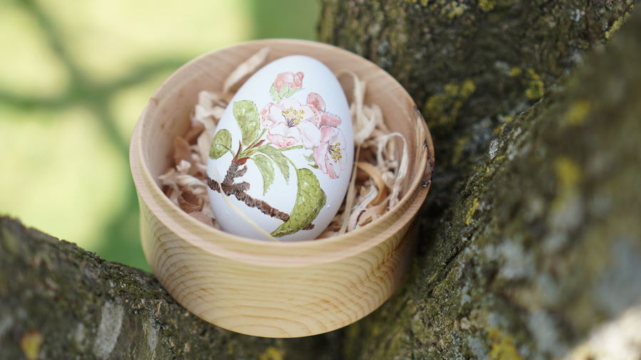#Easter #NoFilter #easter Eggs #handmade Beauty In Nature Flower Flower Head Fragility Nature No People Outdoors Tree