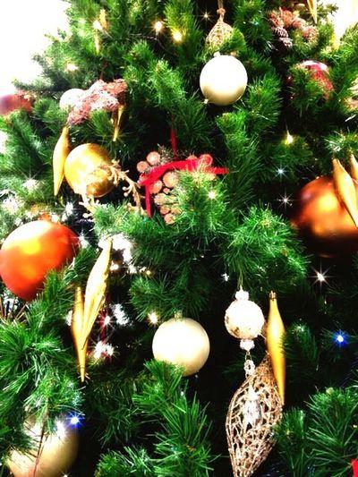 Merry Christmas🎄 おめでとう❤ 素敵な1日に なりますように(*´ω`*)ニャハ...♪ Christmas Christmas Tree Green Color Happyday With You ハピハピ キミといっしょに クリスマスツリー キミに届け