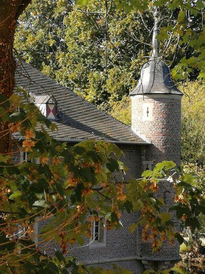 Castle Burgau Dueren Castle Burgau Dueren Tree Roof Tiled Roof  Architecture Building Exterior Built Structure