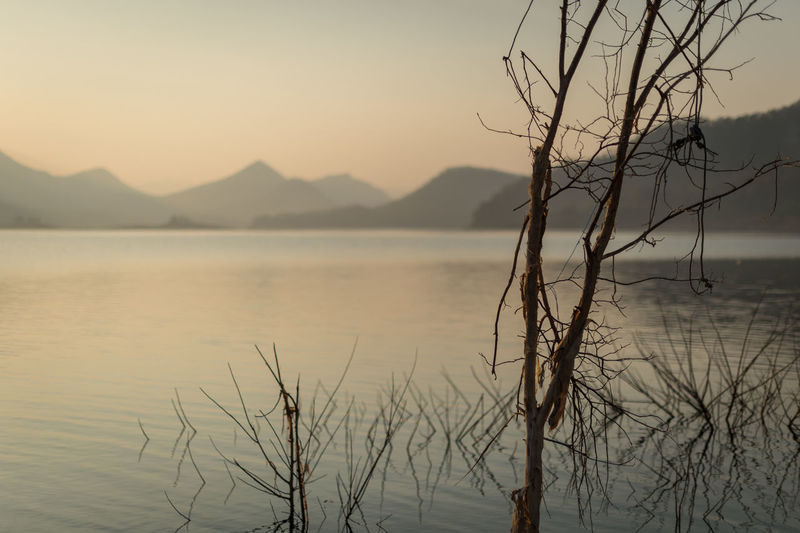 Water Tranquility Sky Beauty In Nature Tranquil Scene Scenics - Nature Sunset Bare Tree Tree Nature Mountain No People Non-urban Scene Lake Plant Branch Focus On Foreground Outdoors