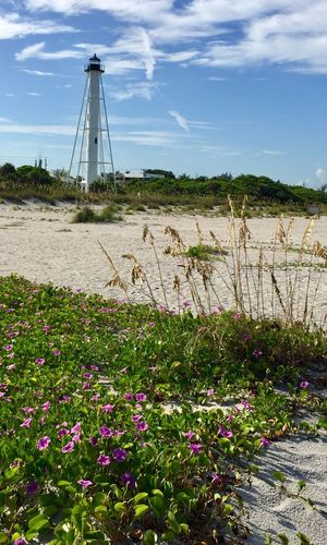 Lighthouse Beachphotography Flowers Nature