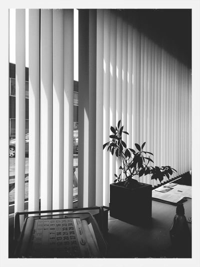 At the office. First Eyeem Photo