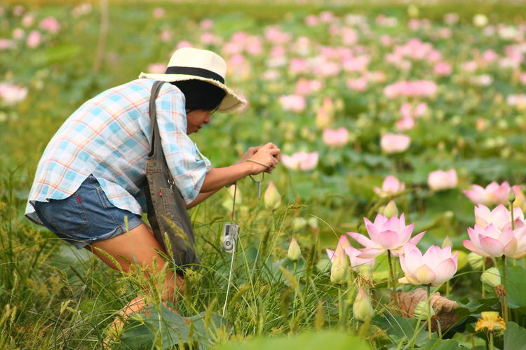 Side View Of Woman Photographing Pink Lotus