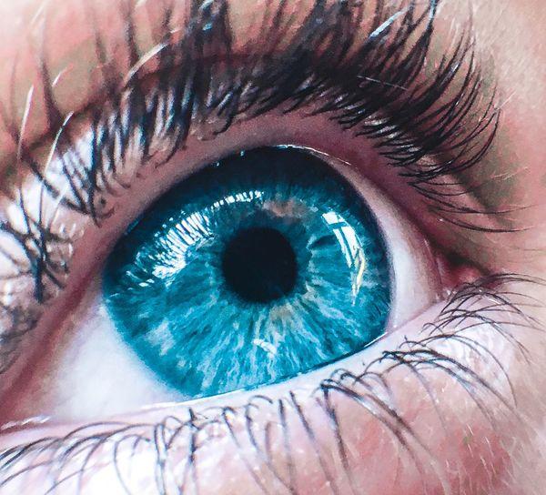 Human Eye Eyelash Real People Sensory Perception Human Body Part One Person Eyesight Looking At Camera Eyeball Iris - Eye Close-up Blue Portrait Day Eyebrow Outdoors People