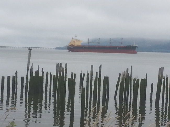Fog Nautical Vessel Outdoors Harbor Lake Cloud - Sky Water Freight Transportation Horizon Over Water Shipping  Industry Tranquility Astoria, OR Astoria, Oregon Columbia River Northcoastrecovery Water's Edge Container Ship Sky Sea Business Finance And Industry