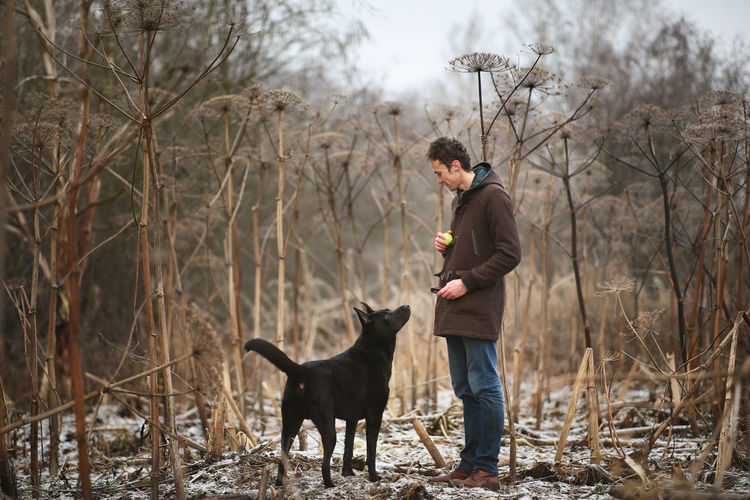 Man training dog against bare trees on land during winter